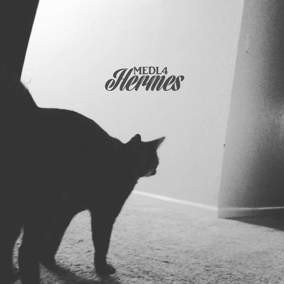 Medl4 - Hermes