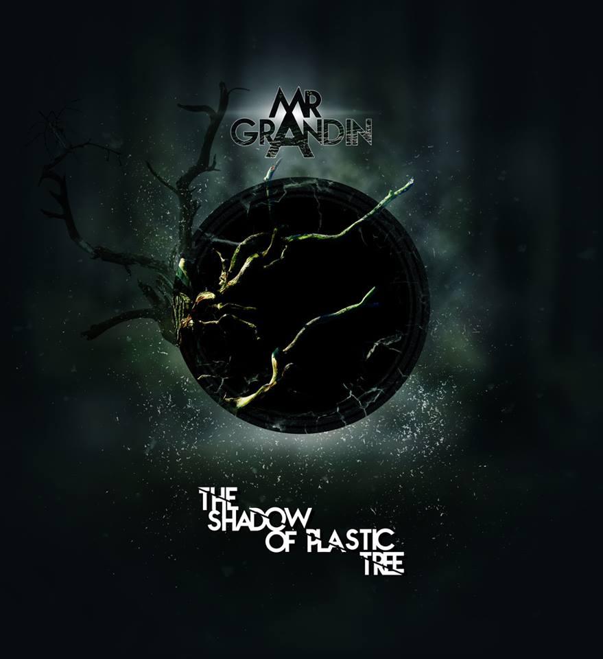 Monsieur Grandin - The Shadow Of Plastic Tree