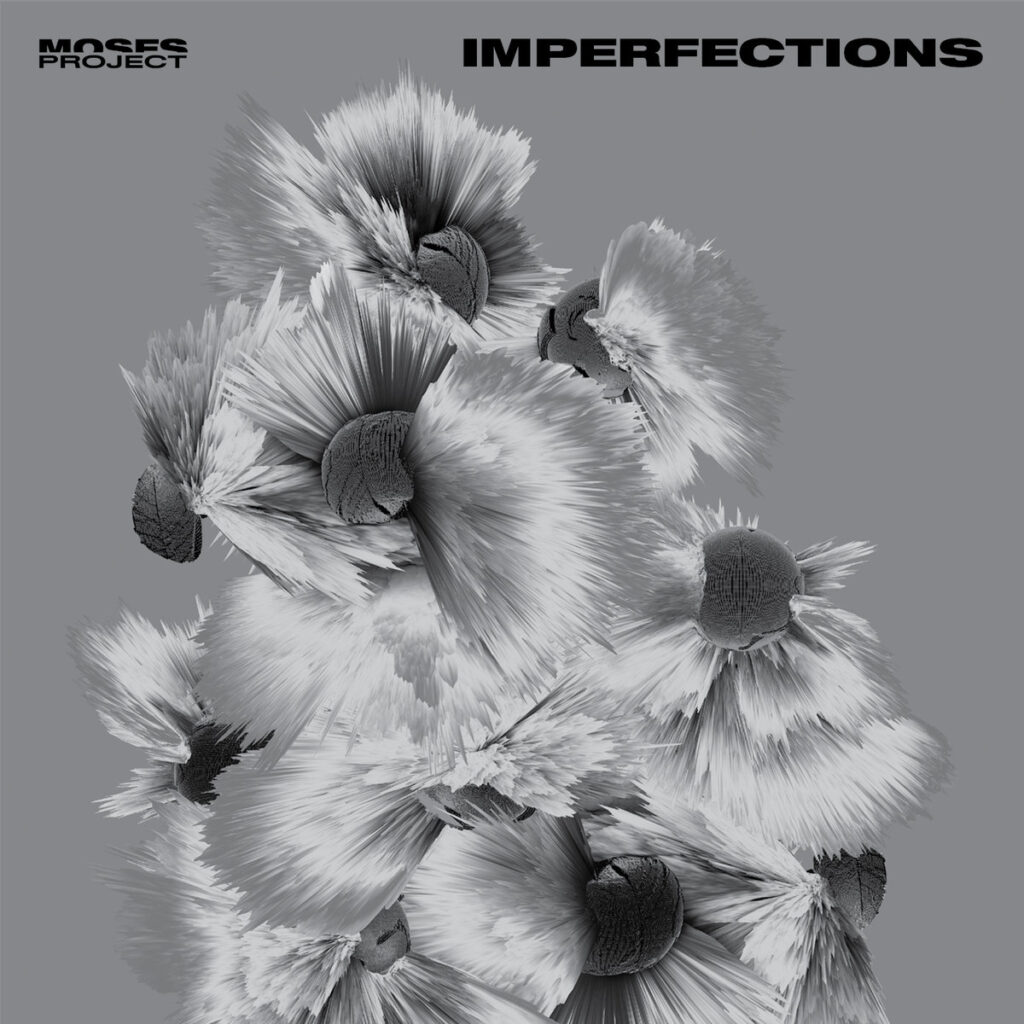 Moses Project - Imperfections