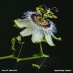 Black Square - Beggars Opera