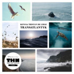 Keno & Tristan De Liege - Transatlantyk